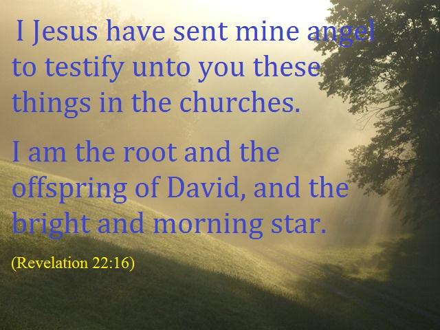 revelation 22-16