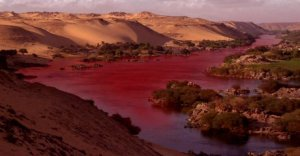 Egypt blood river