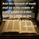 micah 5-7 remnants