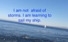 sail-my-ship-copy-2.jpg.jpeg