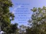 isaiah-411720
