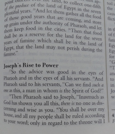 joseph-building-wealth