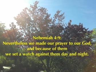 nehemiah-49