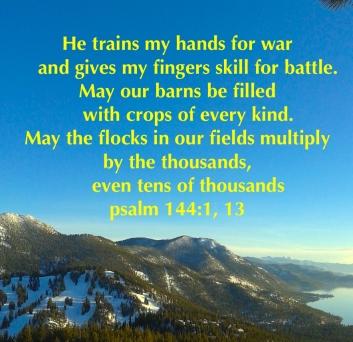 psalm-144113