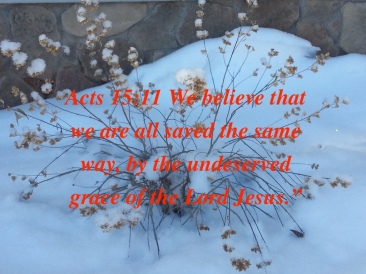 acts-1511