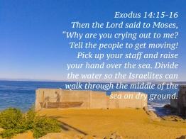 exodus-141516