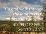 genesis-1317