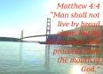 matthew-44