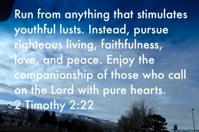 2 Timothy 2:22