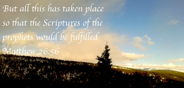 Matthew 26:56
