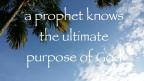 true prophet