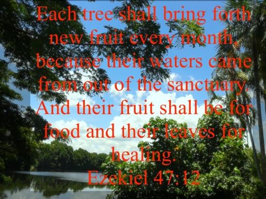 Ezekiel 47:12