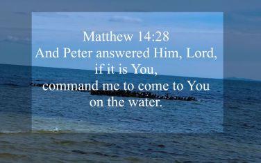 Matthew 14:28
