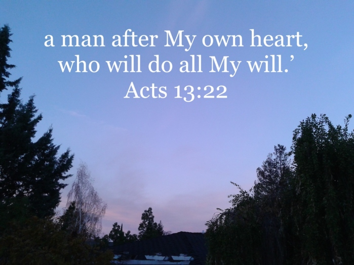 Acts 13:22