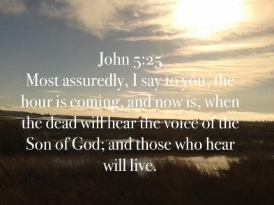 John 5:25