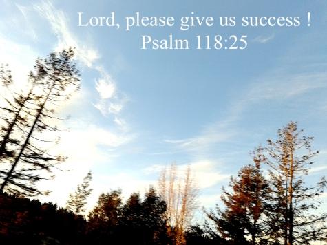 psalm 11825