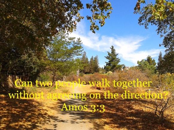 Amos 3:3