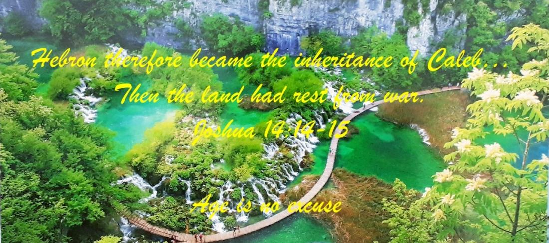 Joshua 14:1415