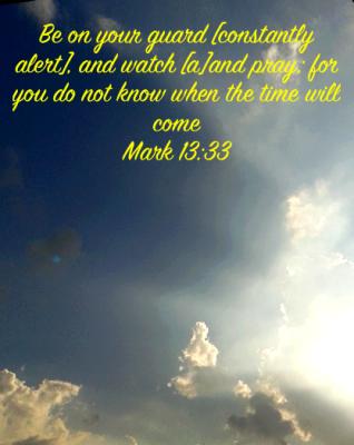Mark 1333
