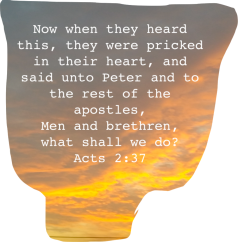 acts-2-37